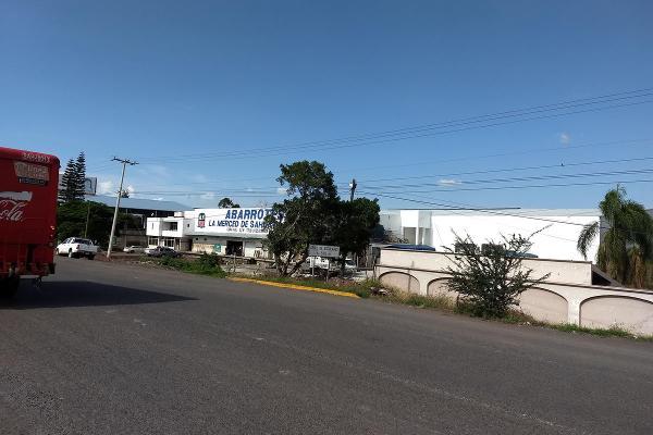 Foto de terreno habitacional en renta en  , jardines de sahuayo, sahuayo, michoacán de ocampo, 8114216 No. 03
