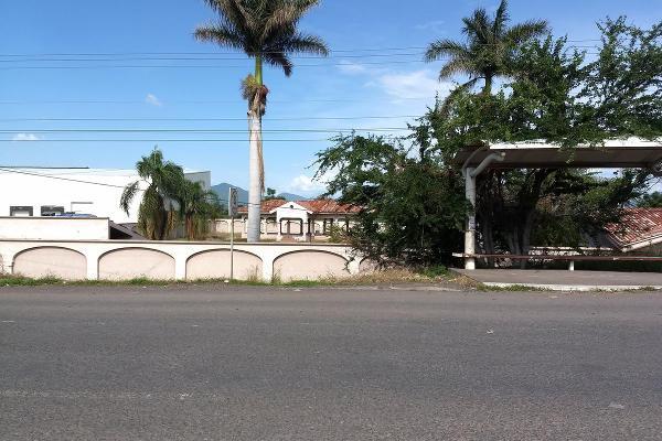 Foto de terreno habitacional en renta en  , jardines de sahuayo, sahuayo, michoacán de ocampo, 8114216 No. 05