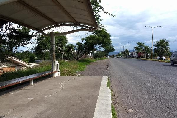 Foto de terreno habitacional en renta en  , jardines de sahuayo, sahuayo, michoacán de ocampo, 8114216 No. 08