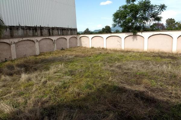 Foto de terreno habitacional en renta en  , jardines de sahuayo, sahuayo, michoacán de ocampo, 8114216 No. 13