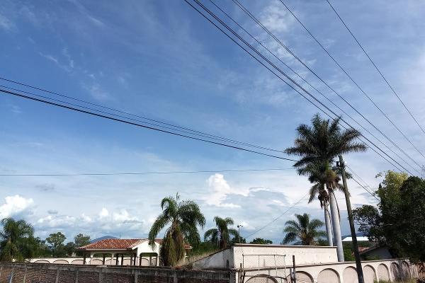 Foto de terreno habitacional en renta en  , jardines de sahuayo, sahuayo, michoacán de ocampo, 8114216 No. 17