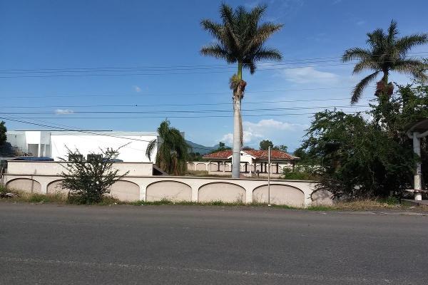 Foto de terreno habitacional en renta en  , jardines de sahuayo, sahuayo, michoacán de ocampo, 8114216 No. 19