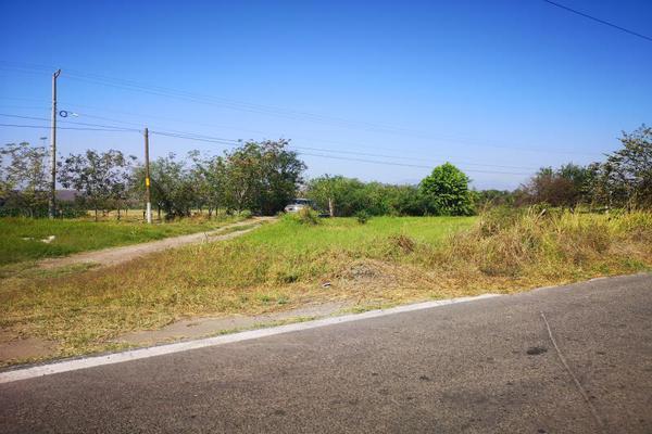 Foto de terreno habitacional en venta en lo de villa , lo de villa, colima, colima, 19554426 No. 04