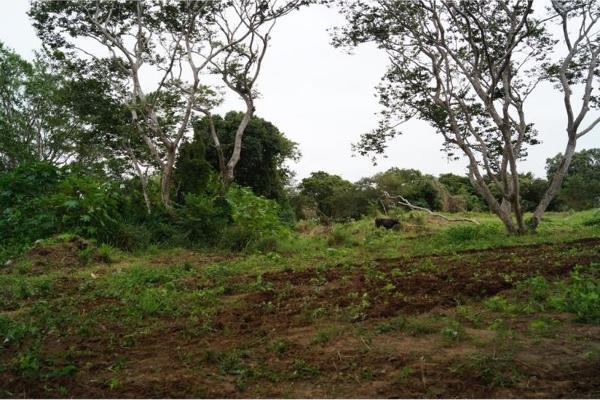 Foto de terreno habitacional en venta en localidad rincon 00, jamapa, jamapa, veracruz de ignacio de la llave, 5376672 No. 01