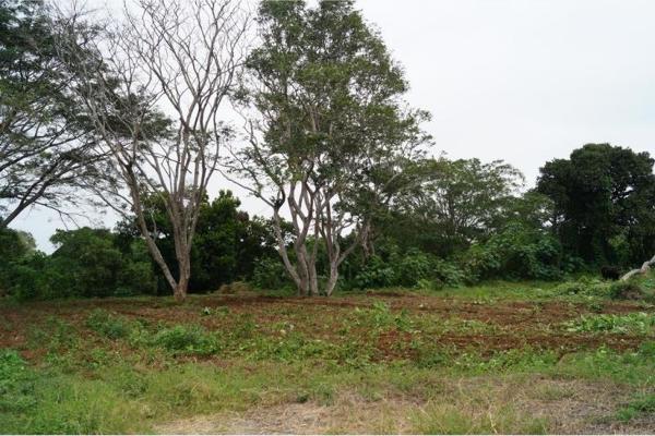 Foto de terreno habitacional en venta en localidad rincon 00, jamapa, jamapa, veracruz de ignacio de la llave, 5376672 No. 02