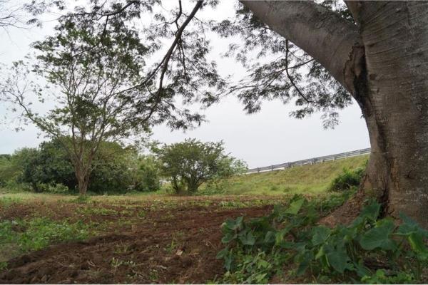 Foto de terreno habitacional en venta en localidad rincon 00, jamapa, jamapa, veracruz de ignacio de la llave, 5376672 No. 03