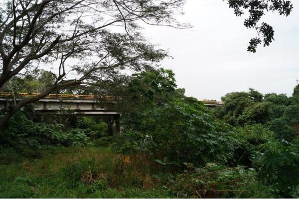 Foto de terreno habitacional en venta en localidad rincon 00, jamapa, jamapa, veracruz de ignacio de la llave, 5376672 No. 08
