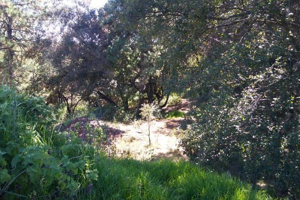 Foto de terreno habitacional en venta en loma de la hacienda , boca negra, villa del carbón, méxico, 6149663 No. 07