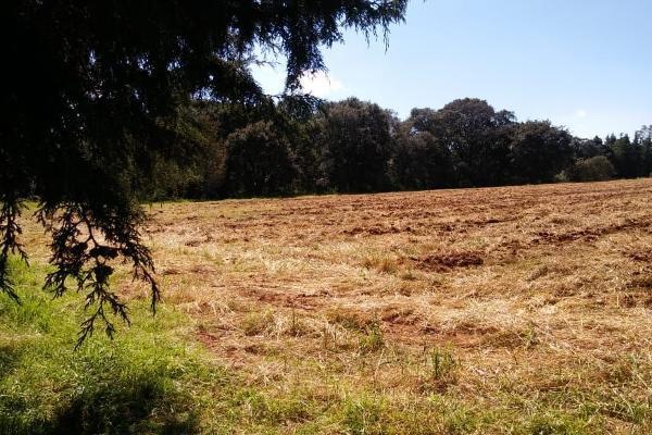 Foto de terreno habitacional en venta en loma de la hacienda , boca negra, villa del carbón, méxico, 6149663 No. 09