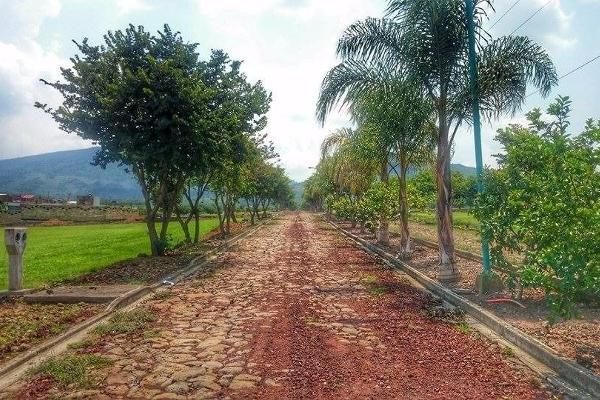 Foto de terreno habitacional en venta en  , loma linda, tangancícuaro, michoacán de ocampo, 3427680 No. 03