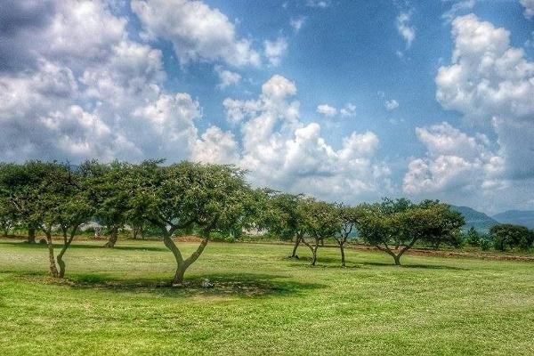 Foto de terreno habitacional en venta en  , loma linda, tangancícuaro, michoacán de ocampo, 3427680 No. 04