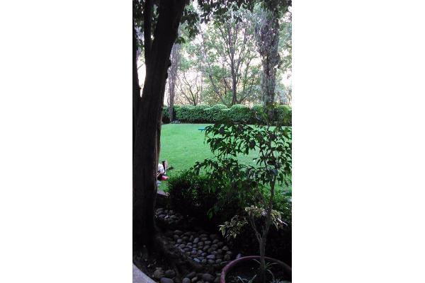 Foto de departamento en renta en  , lomas de chapultepec iv sección, miguel hidalgo, distrito federal, 2634940 No. 06