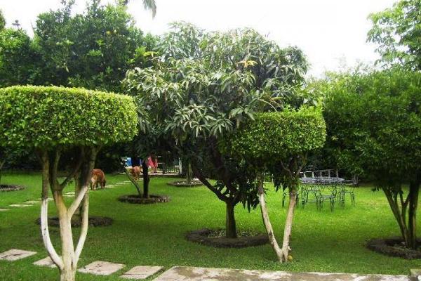 Foto de terreno habitacional en venta en  , lomas de cortes oriente, cuernavaca, morelos, 4666396 No. 01