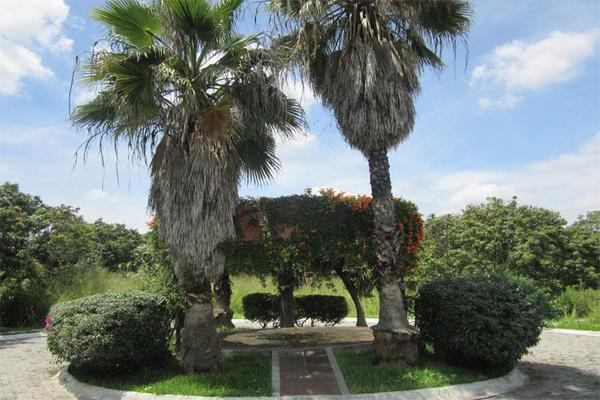 Foto de terreno habitacional en venta en  , lomas de jiutepec, jiutepec, morelos, 0 No. 05