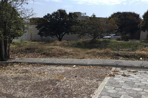 Foto de terreno habitacional en venta en  , lomas de jiutepec, jiutepec, morelos, 7962735 No. 03