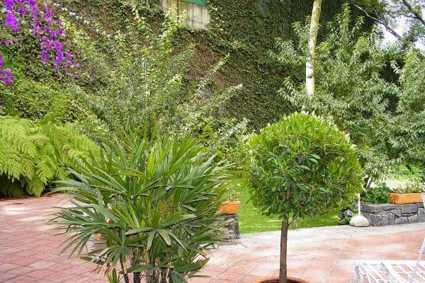 Foto de terreno habitacional en venta en  , lomas de reforma, miguel hidalgo, df / cdmx, 9116570 No. 06