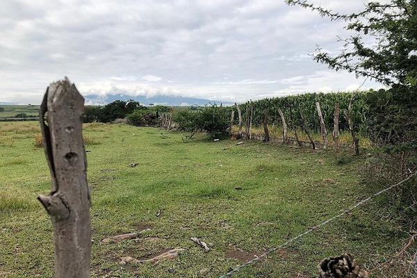 Foto de terreno habitacional en venta en  , lomas de tejeda, tlajomulco de zúñiga, jalisco, 5812841 No. 04