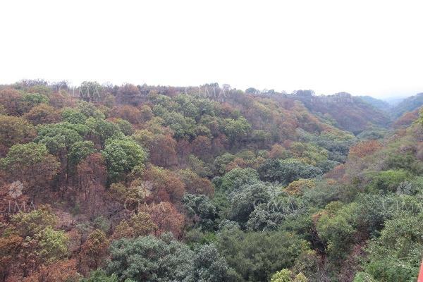 Foto de departamento en renta en  , lomas de tetela, cuernavaca, morelos, 5689895 No. 03