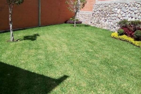 Foto de casa en venta en  , lomas de trujillo, emiliano zapata, morelos, 5678353 No. 04