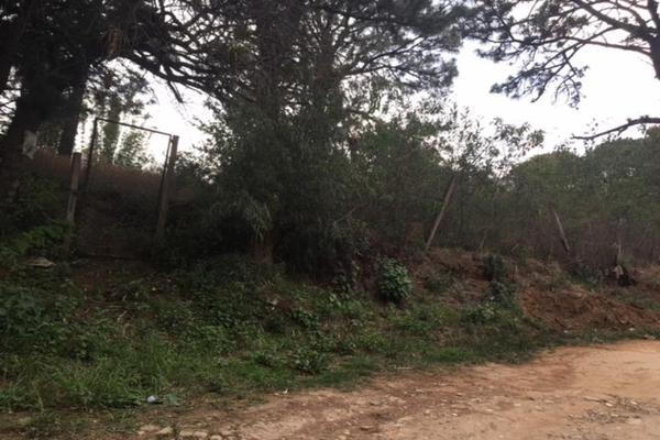 Foto de terreno habitacional en venta en  , lomas de zompantle, cuernavaca, morelos, 5442827 No. 01