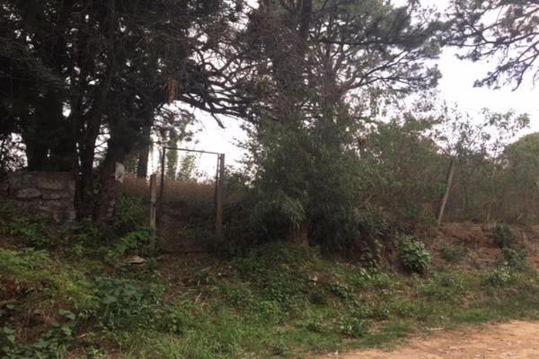 Foto de terreno habitacional en venta en  , lomas de zompantle, cuernavaca, morelos, 5442827 No. 03