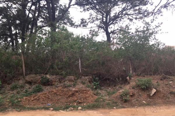 Foto de terreno habitacional en venta en  , lomas de zompantle, cuernavaca, morelos, 5442827 No. 07