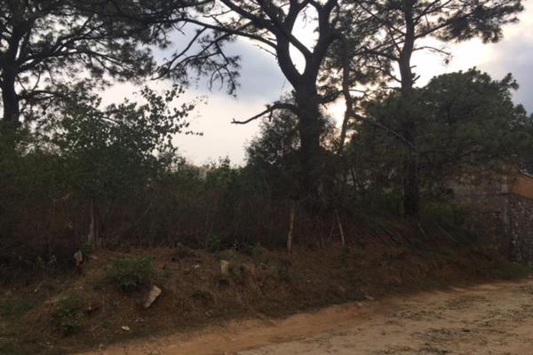 Foto de terreno habitacional en venta en  , lomas de zompantle, cuernavaca, morelos, 5442827 No. 08