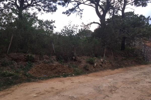 Foto de terreno habitacional en venta en  , lomas de zompantle, cuernavaca, morelos, 5442827 No. 09