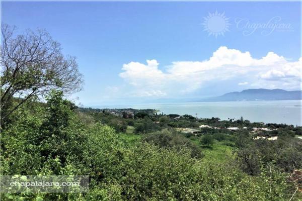Foto de terreno habitacional en venta en lomas del camino al limón 0, san juan cosala, jocotepec, jalisco, 8288524 No. 05