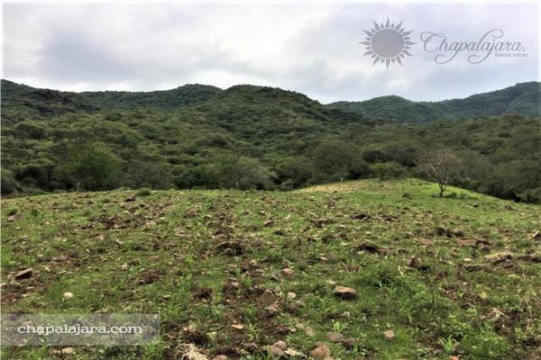 Foto de terreno habitacional en venta en lomas del camino al limón 0, san juan cosala, jocotepec, jalisco, 8288524 No. 09