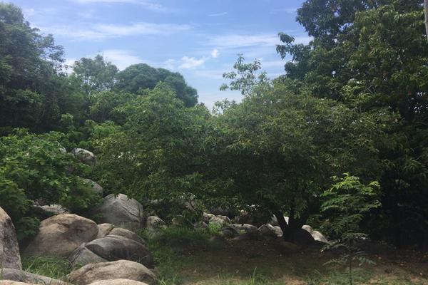 Foto de terreno habitacional en venta en  , lomas del marqués, acapulco de juárez, guerrero, 7293701 No. 06
