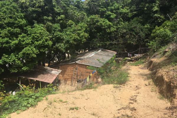 Foto de terreno habitacional en venta en  , lomas del marqués, acapulco de juárez, guerrero, 7293701 No. 13