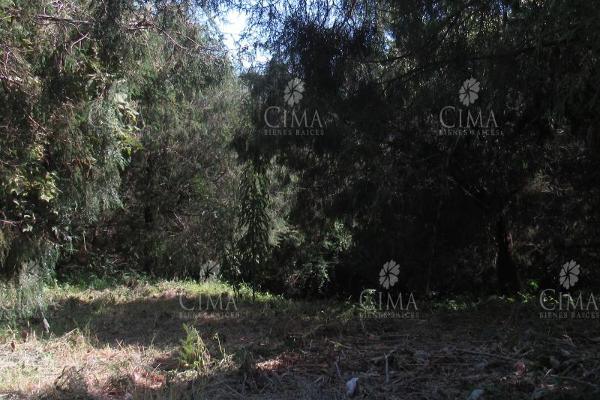Foto de terreno habitacional en venta en  , lomas del conde, cuernavaca, morelos, 9234912 No. 03