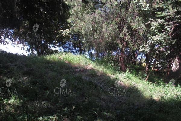 Foto de terreno habitacional en venta en  , lomas del conde, cuernavaca, morelos, 9234912 No. 06