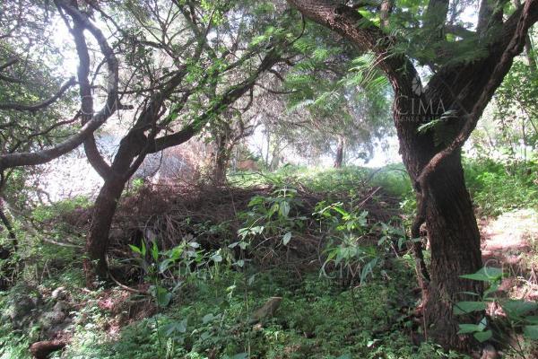 Foto de terreno habitacional en venta en  , lomas del conde, cuernavaca, morelos, 9234912 No. 07
