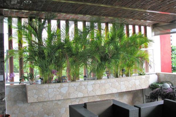 Foto de casa en venta en lomas faro , valle de las garzas, manzanillo, colima, 5956959 No. 10