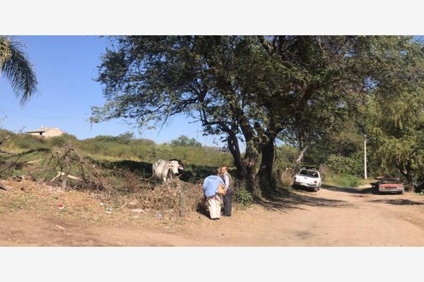 Foto de terreno habitacional en venta en lopez mateos 100, santa cruz de las flores, tlajomulco de zúñiga, jalisco, 0 No. 03