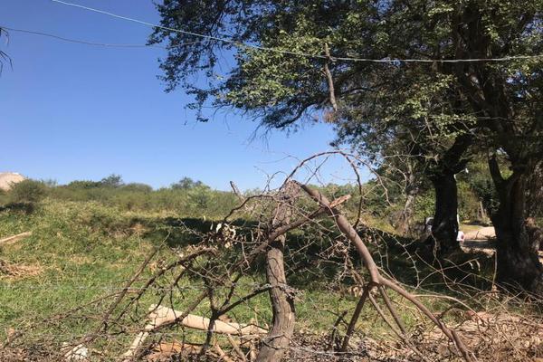 Foto de terreno habitacional en venta en lopez mateos 100, santa cruz de las flores, tlajomulco de zúñiga, jalisco, 13254900 No. 11