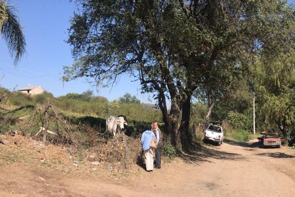 Foto de terreno habitacional en venta en lopez mateos , santa cruz de las flores, tlajomulco de zúñiga, jalisco, 0 No. 21