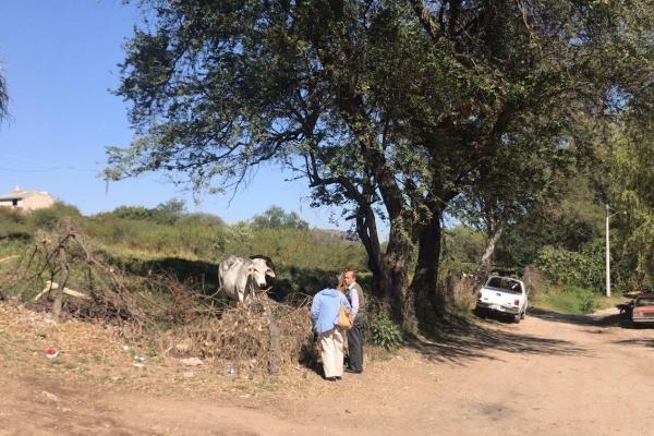 Foto de terreno habitacional en venta en lopez mateos , santa cruz de las flores, tlajomulco de zúñiga, jalisco, 6211600 No. 02