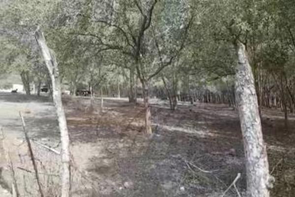 Foto de terreno habitacional en venta en  , los adobes, montemorelos, nuevo león, 4673955 No. 02