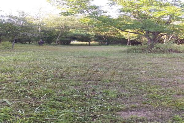Foto de terreno habitacional en venta en  , los adobes, montemorelos, nuevo león, 7280620 No. 02