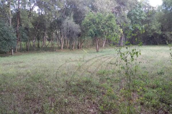 Foto de terreno habitacional en venta en  , los adobes, montemorelos, nuevo león, 7280620 No. 04
