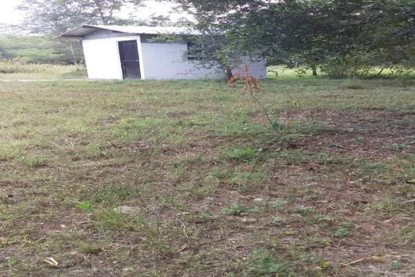 Foto de terreno habitacional en venta en  , los adobes, montemorelos, nuevo león, 7280620 No. 05