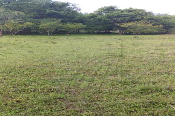Foto de terreno habitacional en venta en  , los adobes, montemorelos, nuevo león, 7280620 No. 06