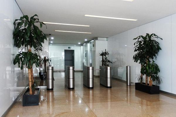 Foto de oficina en renta en  , los alpes, álvaro obregón, df / cdmx, 12260238 No. 05