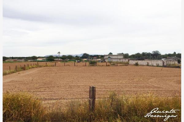 Foto de terreno habitacional en venta en  , los arenales (ejido), torreón, coahuila de zaragoza, 12278049 No. 01