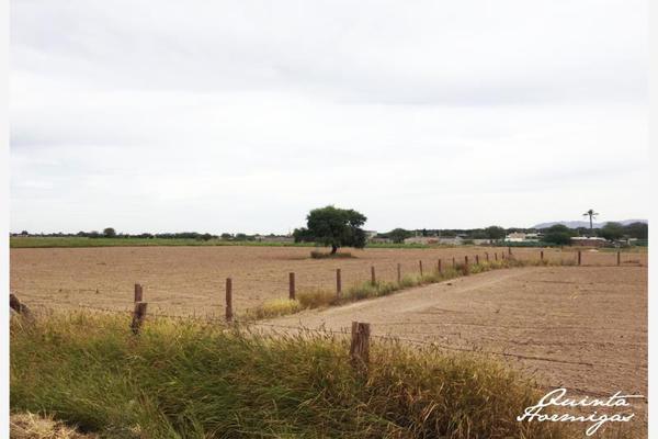 Foto de terreno habitacional en venta en  , los arenales (ejido), torreón, coahuila de zaragoza, 12278049 No. 04