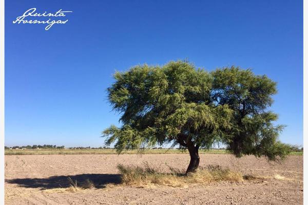 Foto de terreno habitacional en venta en  , los arenales (ejido), torreón, coahuila de zaragoza, 12278049 No. 06