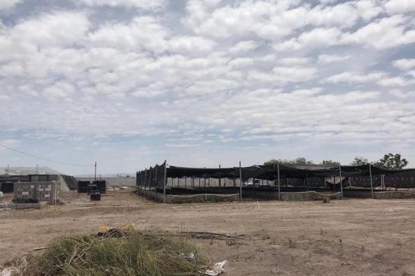 Foto de terreno comercial en venta en  , el águila, torreón, coahuila de zaragoza, 9279712 No. 03